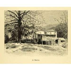 Crosshatching Tree Dwelling Art   Original Engraving