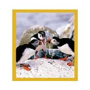 New Magnetic Bookmark Puffins Chat High Quality Modern
