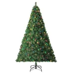 Trim a Home 6.5ft Van Buren Pine Christmas Tree with 500 Multi color