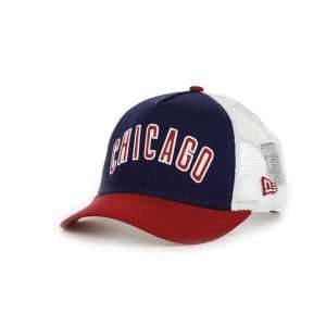 Chicago Cubs New Era MLB Team Fresh Cap