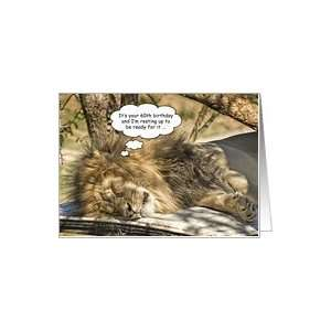 Sleeping lion   Happy 60th Birthday Card: Toys & Games