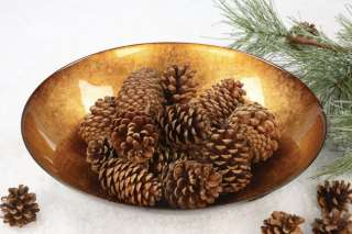 NEW Decorative Glass GOLD ACCENT BOWL Vase Distressed
