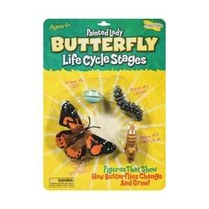 Insect Lore Life Cycle Stages Butterfly; 3 Items/Order
