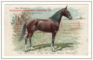 1886 JOE PACHEN Harness Racing VICORIAN RADE CARD Sandard Oil
