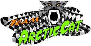 LG ARCTIC CAT TRAILER DECAL/DECALS/GRAPHICS NEW STYLE