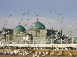 The Famous White Pigeons, Shrine of Hazrat Ali, Mazar I Sharif, Balkh