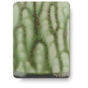 Amaco Pompeian Ash Lead Free High Fire Glazes   Green