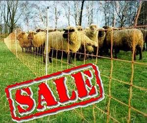 ELECTRIC NETTING 90cm/ fencing, sheep,alpaca,lama,pigs