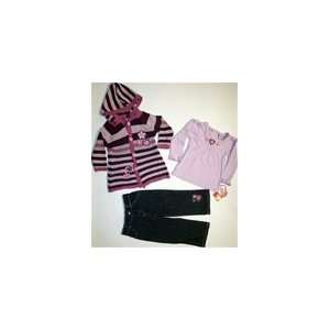 Young Heart Toddler Girls 3 Pcs. 2T 4T Purple Flower Sweater Set