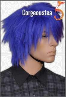 GW429 Blue Purple Showy Punk Psychobilly Mens Hair Wig
