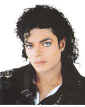 Adult Michael Jackson Curly Thriller Wig Wholesale Price $9.90 In