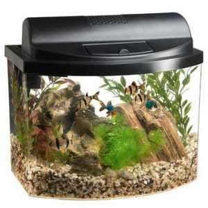 Black (Catalog Category Aquarium / Desk Top Aquariums) Pet Supplies