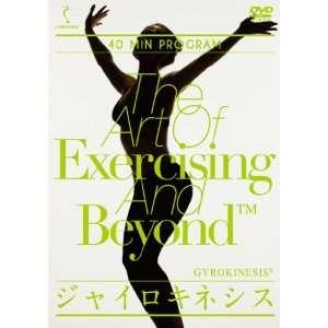 Special Interest   Gyrokinesisu 40 Min Program [Japan DVD