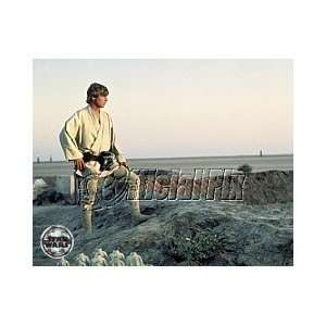 ) Luke Skywalker Watches the Twin Sunset Color Print Home & Kitchen