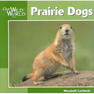 Prairie Dogs (Our Wild World) [Paperback]
