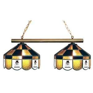 Wake Forest Demon Deacons 2 Light Executive Stained Glass Hanging Lamp