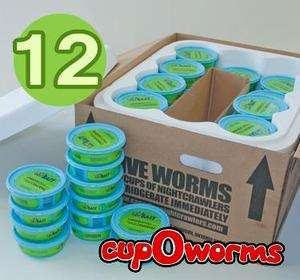 Nightcrawlers 45 cups/1 doz   live bait, fishing worms, pet feed